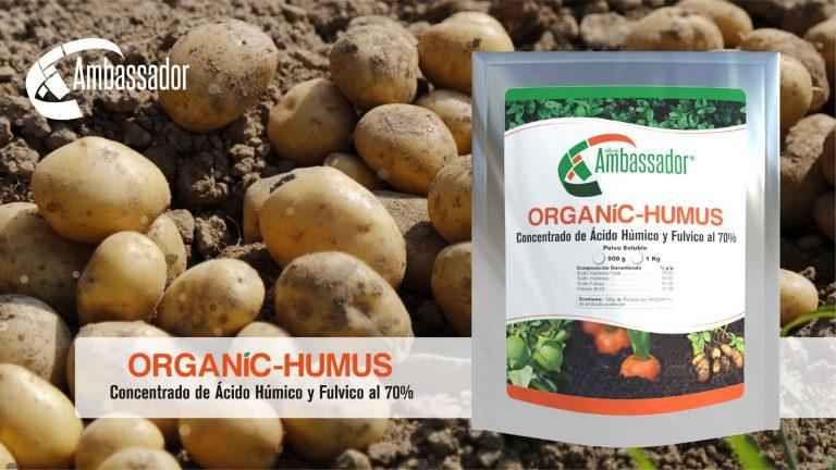 Organic Humus 2