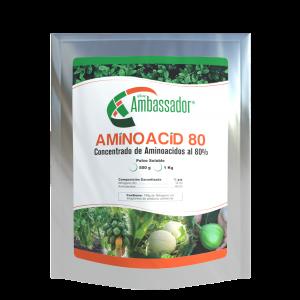Amino Acid 80